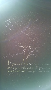 Shakespearean quotes on metal sculpture, lit with sunlight.